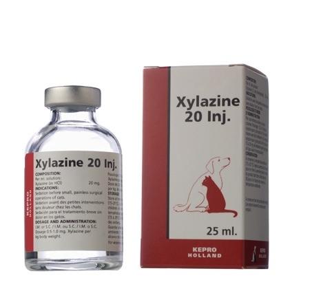 """อ.อ๊อด เผย ผลวิเคราะห์สารพิษในขวดน้ำนักวิ่ง มีสาร """"ไซลาซีน"""" นิยมใช้เป็นยาสลบในสัตว์"""