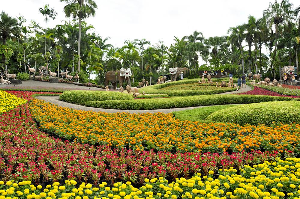 สวนนงนุช