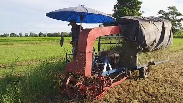 เจ๋ง!หนุ่มชาวนาสุโขทัยดูยูทูปประดิษฐ์รถเกี่ยวหญ้าเองกับมือ 15 วันเสร็จ