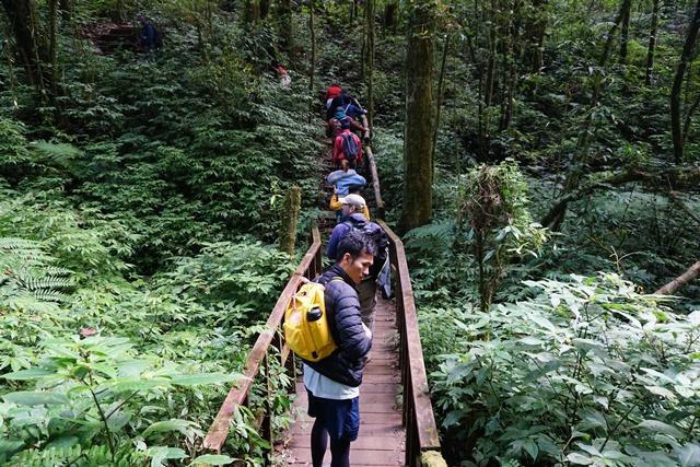 ความสำคัญของป่าฝน คนยุคนี้ต้องเข้าใจว่า ทำไมเราทุกคนถึงต้องร่วมการอนุรักษ์ พร้อมรณรงค์และส่งต่อความรู้ และสร้างเครือข่าย