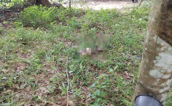 สุดสลด! ด.ช.วัย 6 ปีหายจากบ้านเกือบ 2 วันสุดท้ายกลายเป็นศพในสวนยางฯ สภาพถูกสุนัขกัดแทะ