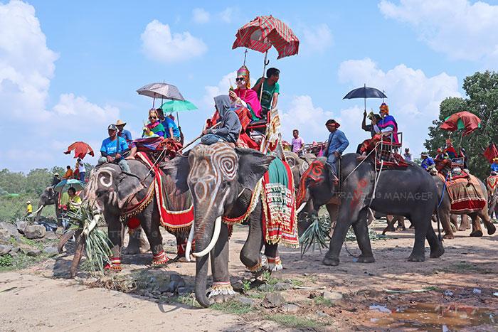 ประเพณีบวชนาคช้าง จ.สุรินทร์ หนึ่งในตัวอย่างความผูกพันของคนกับช้าง