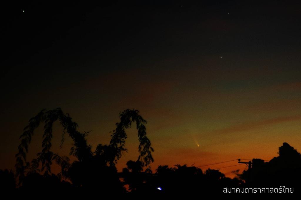 ภาพดาวหางนีโอไวส์ (NEOWISE) หรือ C/2020 F3 ที่ นายปณัฐพงศ์ จันทรวัฒนาวณิช บันทึกไว้เมื่อวันพุธที่ 8 กรกฎาคม 2563 เวลา 5:00 น. ณ อ.สองพี่น้อง จ.สุพรรณบุรี