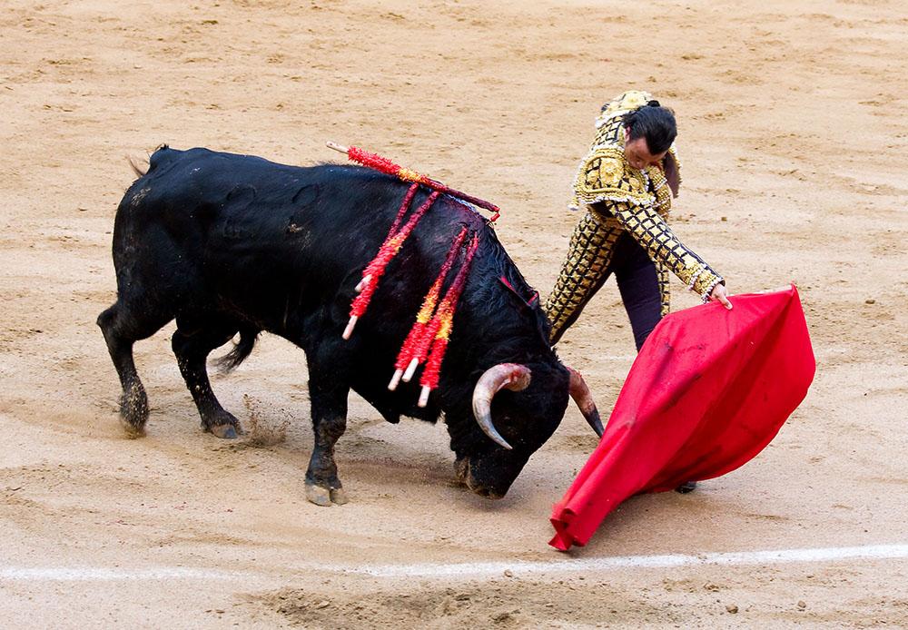 สู้วัวกระทิง วัฒนธรรมที่ชาวสเปนภูมิใจและสืบทอดมายาวนาน