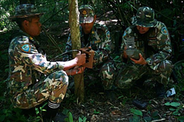 เจ้าหน้าที่พิทักษ์ป่าร่วมกับ WWF ประเทศไทย ในการสำรวจการกระจายพันธุ์ของเสือโคร่งและสัตว์ป่า