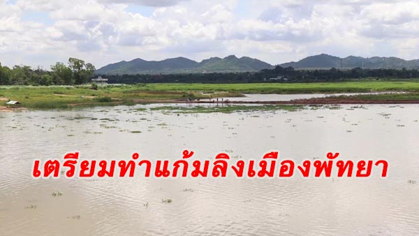 กรมชลฯ เตรียมจัดหางบทำแก้มลิงใน 2 พื้นที่เมืองพัทยา แก้ปัญหาน้ำท่วมซ้ำซาก