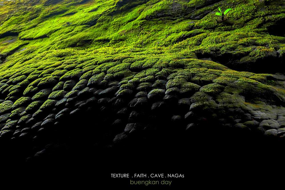 เกล็ดพญานาคจากปรากฏการณ์ซันแครก  (ภาพ : เพจ Buengkan day)