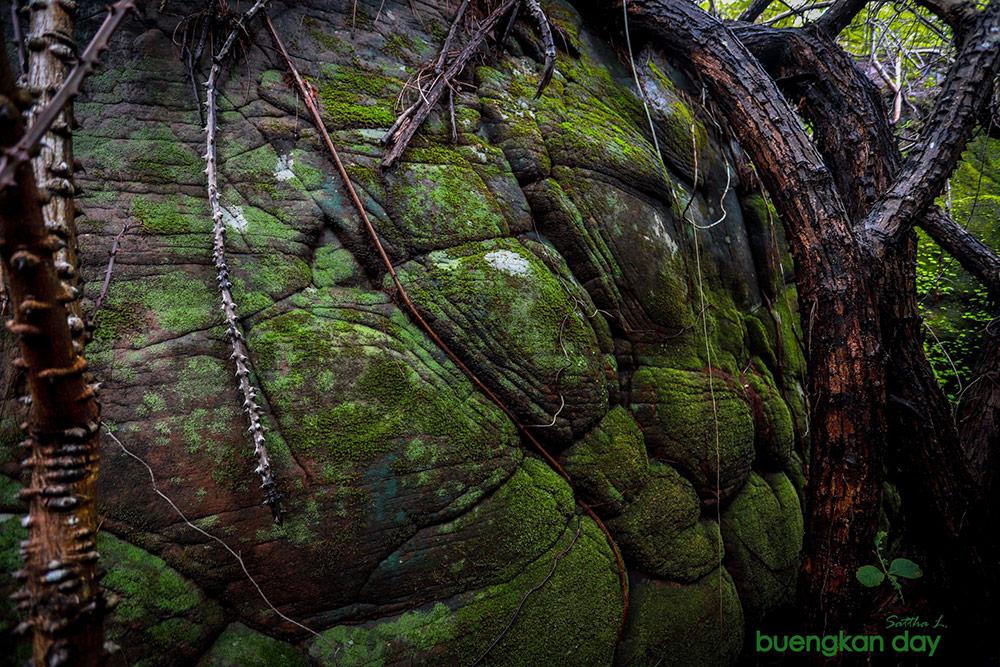อันซีนถ้ำนาคา (ภาพ : เพจ Buengkan day)