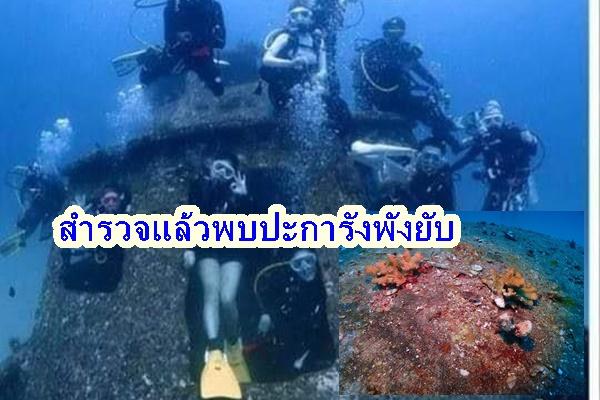 ยอมไม่ได้ ลงสำรวจพบปะการังบนเรือเสียหายยับหลังนักดำน้ำลงไปเยียบย่ำ
