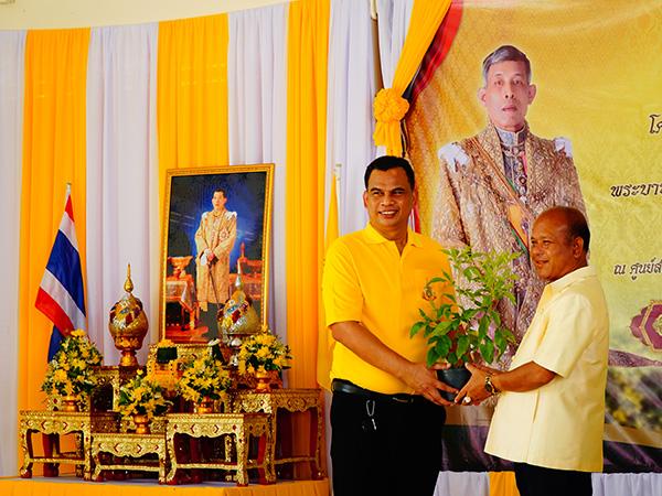 อบจ.พัทลุง ปลูกดอกไม้สีเหลืองเฉลิมพระเกียรติ พระบาทสมเด็จพระเจ้าอยู่หัว