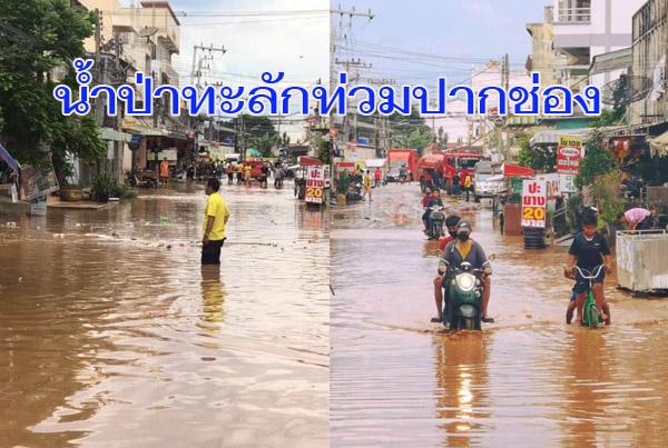 ฝนถล่มหนัก! น้ำป่าไหลทะลักท่วมตลาด-บ้านประชาชน เทศบาลเมืองปากช่อง โคราช