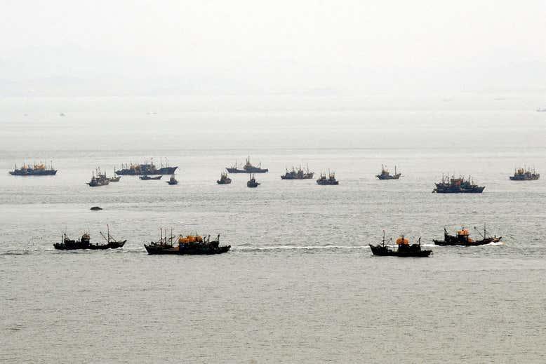 รายงานแฉ! โสมแดงไฟเขียว 'เรือประมงจีน' จับปลาในน่านน้ำ เก็บ 'ค่าต๋ง' เหนาะๆ ปีละ 3,800 ล้าน