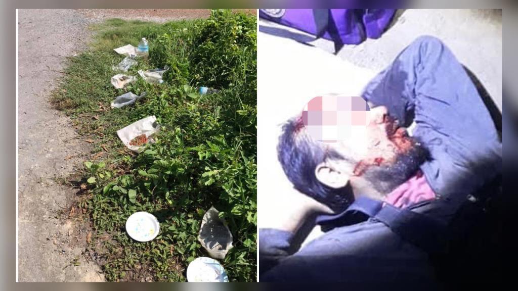 ขอความเห็นใจ! หนุ่มถูกสุนัขจรวิ่งตัดหน้ารถบาดเจ็บสาหัส แนะคนรักสุนัขอย่าให้อาหารริมถนน