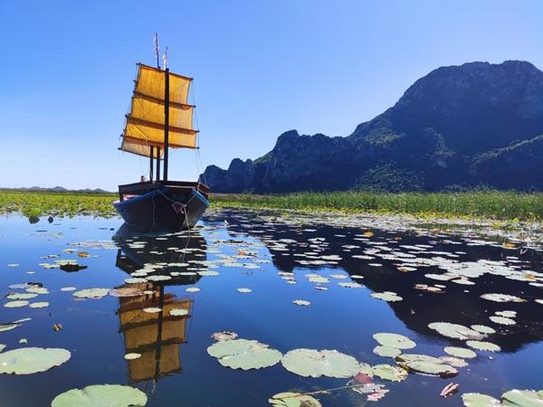 นักท่องเที่ยวแห่ล่องเรือชมสำเภาจีนชมบัวกลางทุ่งสามร้อยยอด