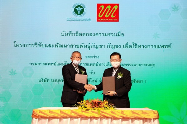 สวนนงนุช ร่วมกรมการแพทย์แผนไทยฯ ลงนามร่วมวิจัยกัญชา-กัญชง