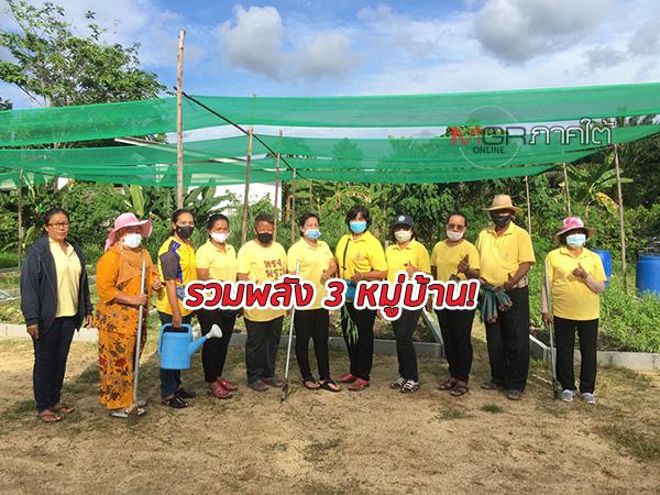 รวมพลัง! กลุ่มสตรี 3 หมู่บ้านใน จ.สตูล ร่วมกันปลูกผักปลอดสารพิษ ช่วยลดรายจ่ายในครัวเรือน