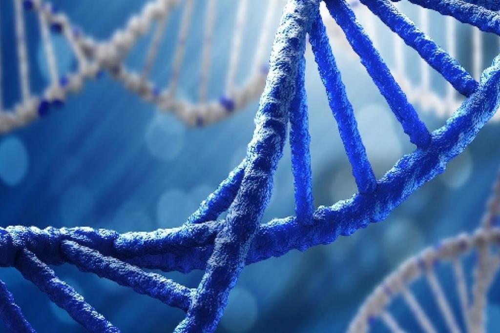 """""""หมอยง"""" ระบุความสำคัญของการถอดรหัสพันธุกรรม สามารถหาต้นตอของไวรัสและพัฒนายาต้านมีประสิทธิภาพ"""
