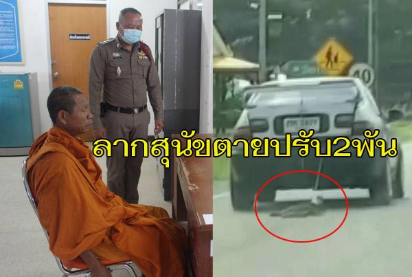 ศาลพิพากษาสั่งปรับ 2,000 บาท พระศรีสะเกษขับเก๋งลากสุนัขจนตาย แชร์ว่อนโซเชียลฯ