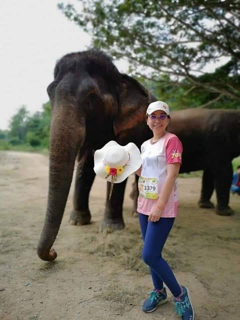 """กูรูช้างไทยเปิดเวทีเสวนา""""ก้าวใหม่ช้างไทยหลังภัยโควิด-19""""ฝ่าวิกฤตช้างตกงาน"""