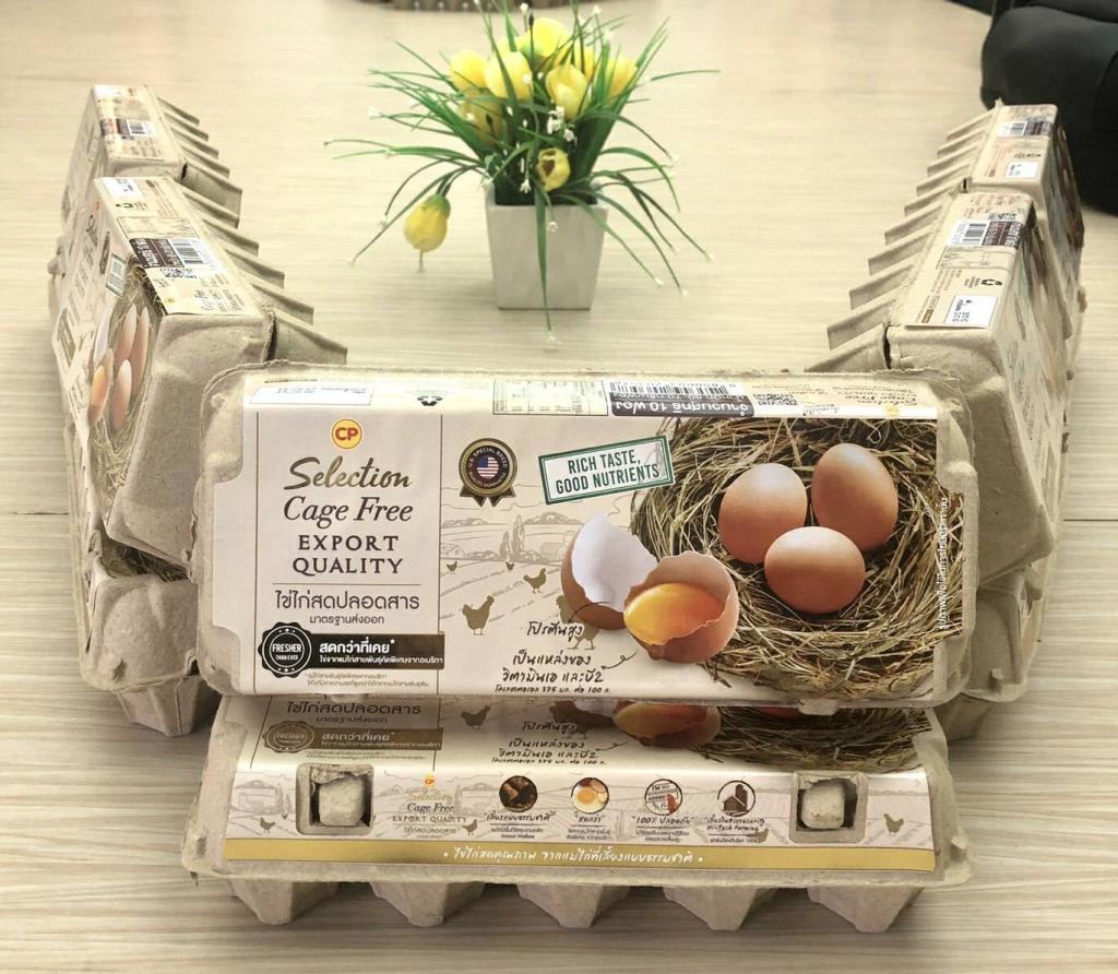 ไข่ไก่ เคจฟรี จากแม่ไก่เลี้ยงแบบธรรมชาติ อีกทางเลือกของคนรักสุขภาพ
