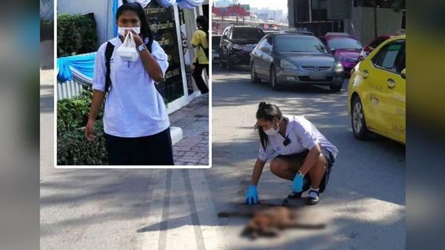 ชื่นชม! นักเรียน ม.2 ร.ร.นนทรีวิทยา อาสาลากซากสุนัขตายแล้วเข้าข้างทาง