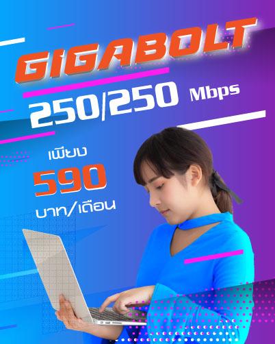 โปรเด็ดเน็ตบ้าน  โดนใจ จากทีโอที Gigabolt VS Work@Home