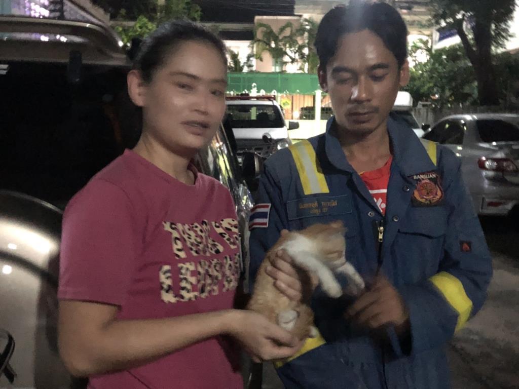 สาวรักสัตว์แจ้งดับเพลิง ทบ.บ้านสวน-ชลบุรีกลางดึก เจอแมวตกซอกตึกลึกกว่า 2 เมตร ร้องทรมาน น้ำตาคลอตามหาเสียงมา 4 วัน