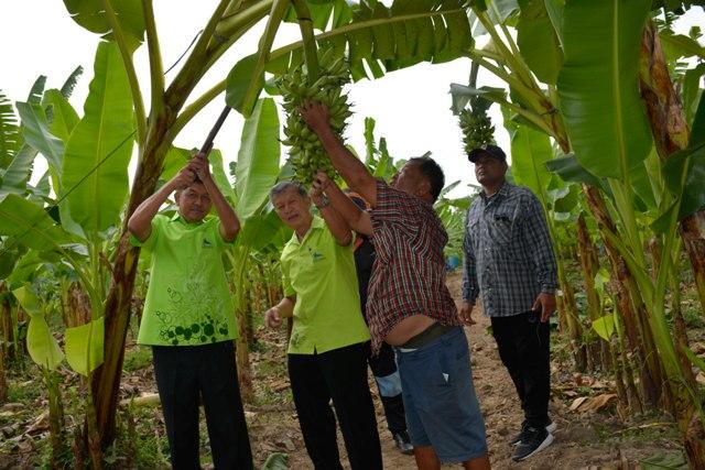 """อลังการแน่!""""กำแพงเพชร""""เตรียมจัดงานสารทไทยกล้วยไข่ฯ10วัน10คืน เริ่ม 17 ก.ย.นี้"""
