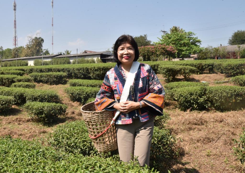 พณ.ยกระดับอุตสาหกรรมชาไทย แนะใช้FTAขยายส่งออก