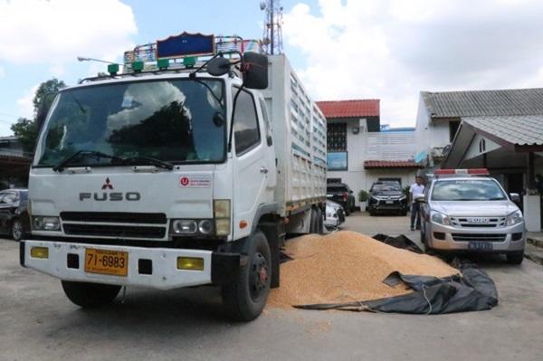 รวบรถบรรทุกข้าวโพด ซุกยาไอซ์  มูลค่ากว่า 493 ล้านบาท