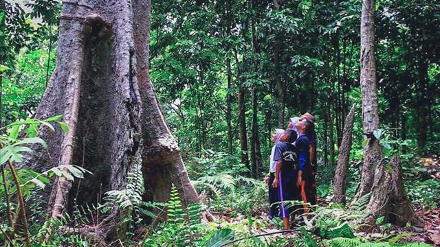 ป่าชุมชน ด่านแรกที่ให้คนอยู่ร่วมกับป่าได้ ชาวบ้านช่วยกันป้องกันการบุกรุกพื้นที่ป่าสงวน