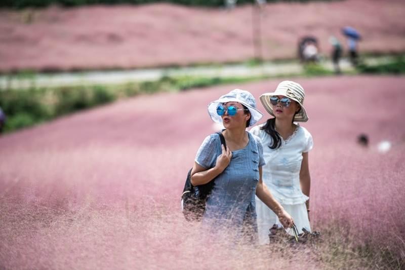 คาดปี 2020 'นทท.จีน' เดินทางในประเทศดิ่ง 43% รายได้ท่องเที่ยวลด 52%