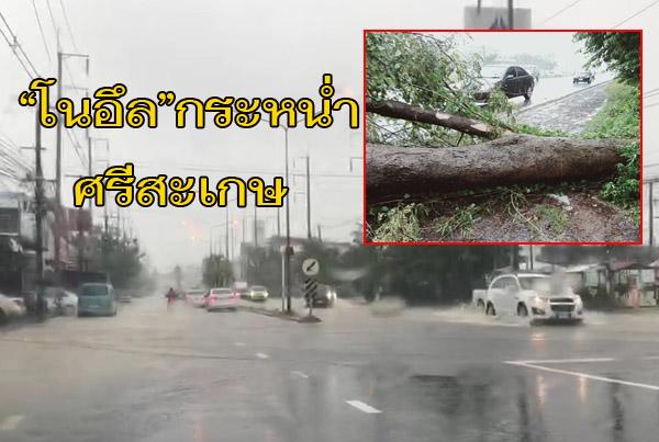 """""""โนอึล""""กระหน่ำศรีสะเกษโค่นต้นไม้ล้มขวางถนน 24 เส้นหลักอีสานใต้ น้ำท่วมทางศรีสะเกษ-อุบลฯ"""