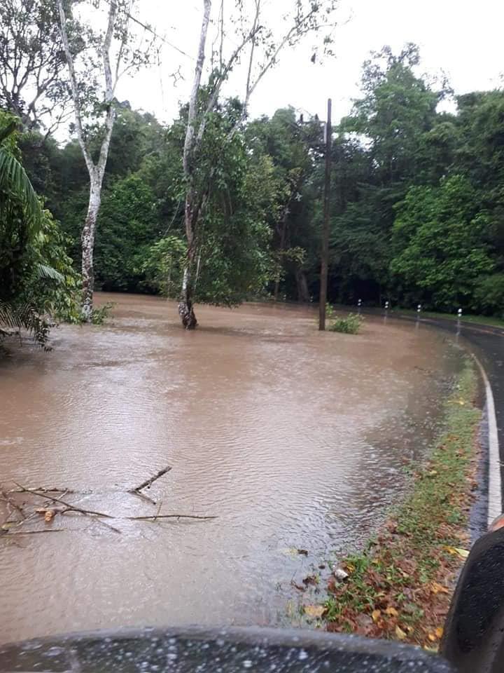 """""""โนอึล""""พ่นพิษ พายุถล่ม ทำน้ำท่วม-ต้นไม้ใหญ่ล้มขวางถนนชนเขาใหญ่ (ภาพ : เพจ ประชาสัมพันธ์ กรมอุทยานแห่งชาติ สัตว์ป่า และพันธุ์พืช)"""