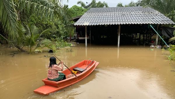"""ฤทธิ์ """"โนอึล """"ทำบ้านเรือน ปชช.-พื้นที่เกษตร 2 อำเภอ จ.ตราดถูกน้ำท่วมสูงบางจุดต้องใช้เรือ"""