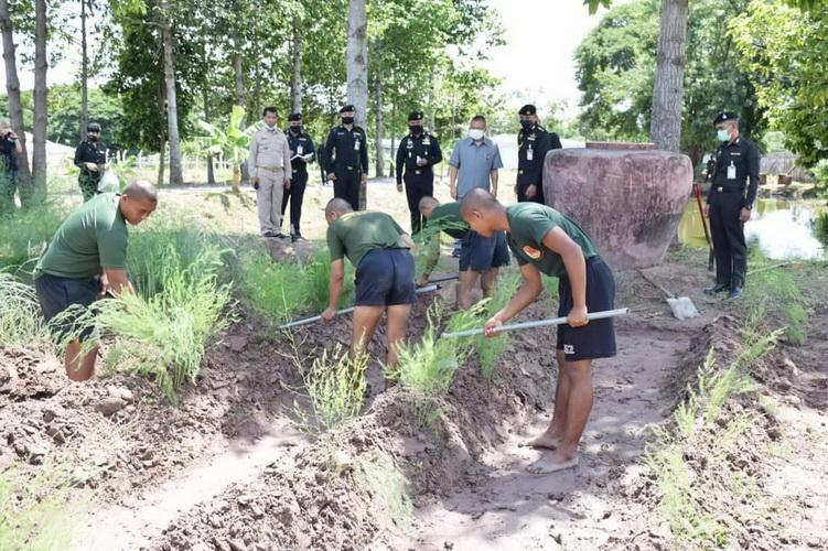 เยี่ยมโครงการทหารพันธุ์ดี มทบ.23 ฝึกกำลังพลปลูกผักปลอดสารเหลือกินก็ขาย