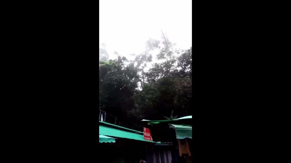 ระทึก! ต้นสนใหญ่สูง 30 เมตรโค่นเชิงบันไดวัดพระธาตุดอยสุเทพหลังฝนหนัก