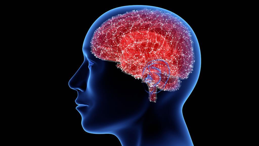 """""""กรมการแพทย์"""" เผย การงีบหลับระหว่างวันช่วยลดความอ่อนเพลีย ไม่ยืนยันป้องกันโรคสมองเสื่อม"""