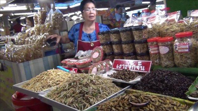 """ส่องร้านรวมแมลงดังคู่กาดทุ่งเกวียน ขายมากว่า 25 ปี- """"เงาะจักจั่น""""ฮิตสุดกิโลฯละ3,500บาทไม่มีเกี่ยง"""