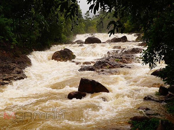 พัทลุงน้ำป่าหลากลงตามน้ำตกต่างๆ หลังฝนตกต่อเนื่องหลายวัน ด้านผู้ว่าฯสั่งเฝ้าระวังทุกพื้นที่