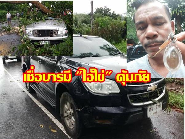 """เชื่อบารมี """"ไอ้ไข่"""" คุ้มภัย!  ต้นไม้ขนาดใหญ่ล้มทับรถยนต์สองคัน คนขับปลอดภัย"""