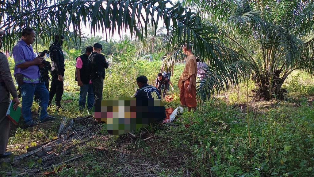 หน่วยงานเกี่ยวข้องเร่งหาทางป้องกันช้างป่าทำร้ายชาวบ้านใน จ.ชลบุรี พบสัปดาห์เดียวดับแล้ว 2