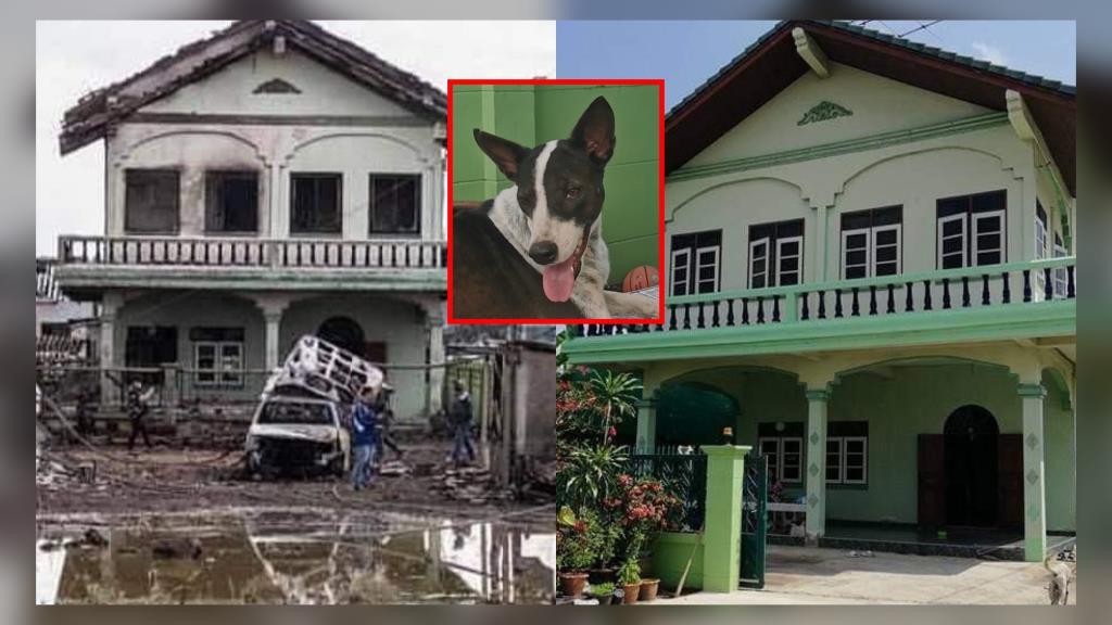 เศร้า! สาวเผยภาพบ้านก่อนเกิดเหตุท่อก๊าซระเบิด วอนตามหาหมาอีกตัวที่หายไป