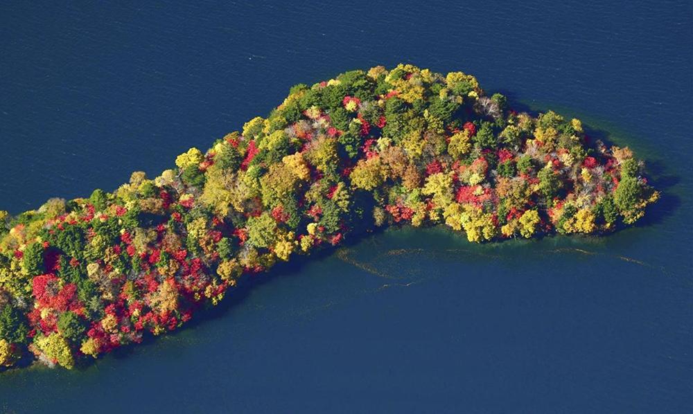"""สีสันสะพรั่งรอบ """"ทะเลสาบชูเซ็นจิ"""" ตื่นตาใบไม้เปลี่ยนสีที่ญี่ปุ่น"""