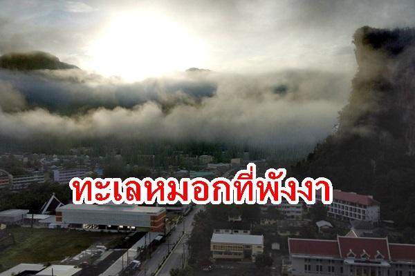 มาชมทะเลหมอกที่พังงาเมืองสวยในหุบเขา