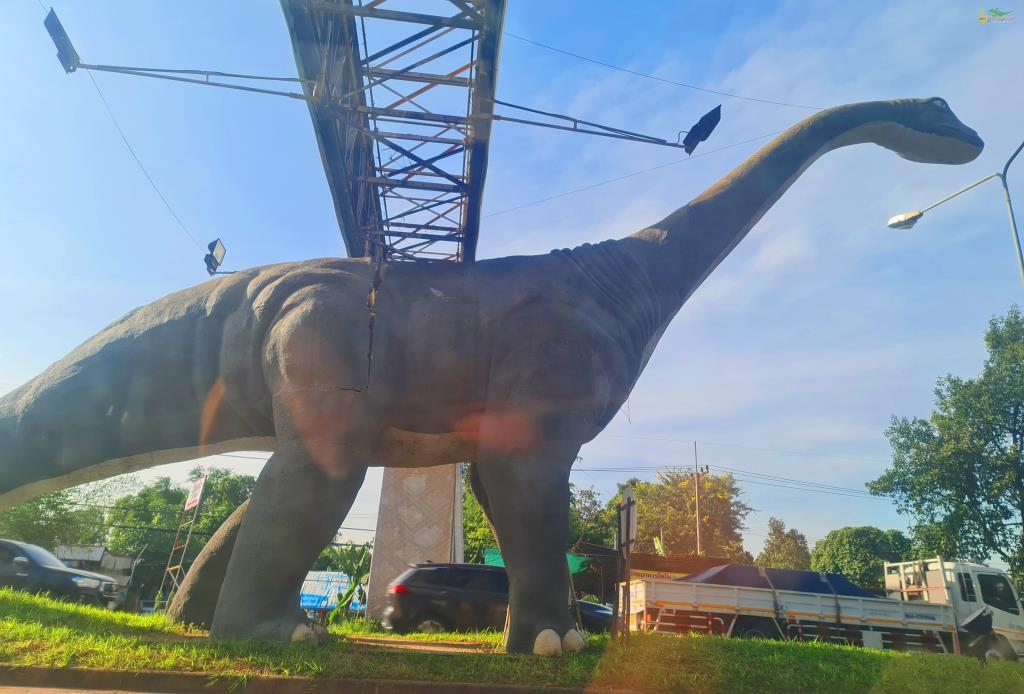 ไดโนเสาร์ขอนแก่นหลังหักซ้ำ หลังเข้าเฝือกขายังไม่หาย