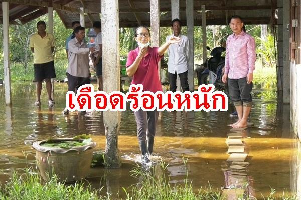 ชาวบ้านโวยทางหลวงสร้างถนนทำน้ำท่วมนานกว่า 2 เดือน อยู่มา 20 ปี ไม่เคยเจอ