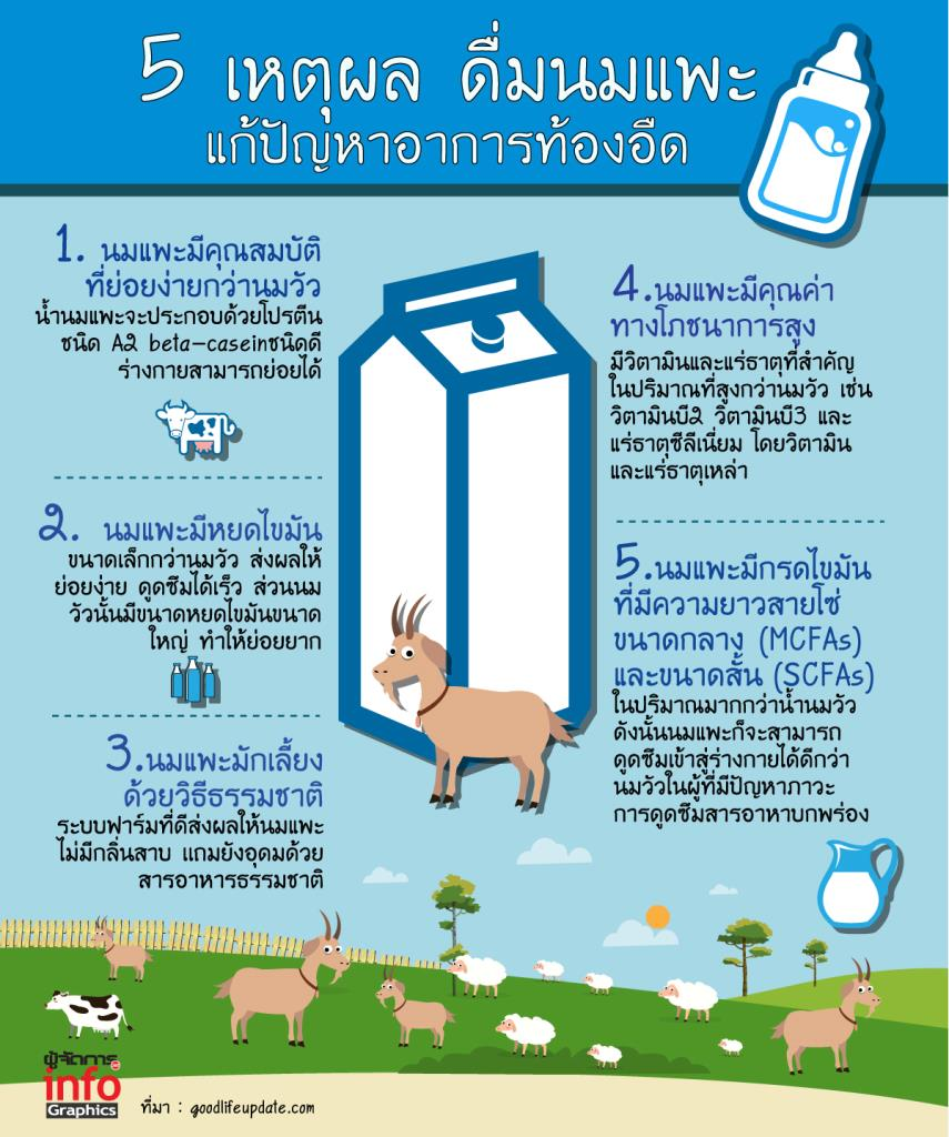 5 เหตุผล ดื่มนมแพะ  แก้ปัญหาอาการท้องอืด