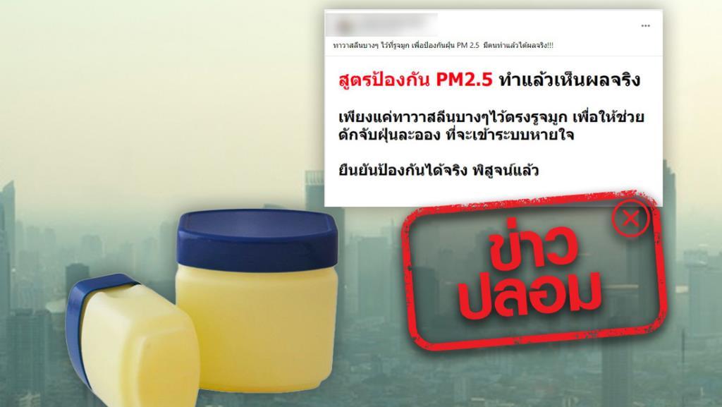 ข่าวปลอม! ทาปิโตรเลียมเจลลี่ ช่วยดักจับฝุ่น ป้องกัน PM 2.5