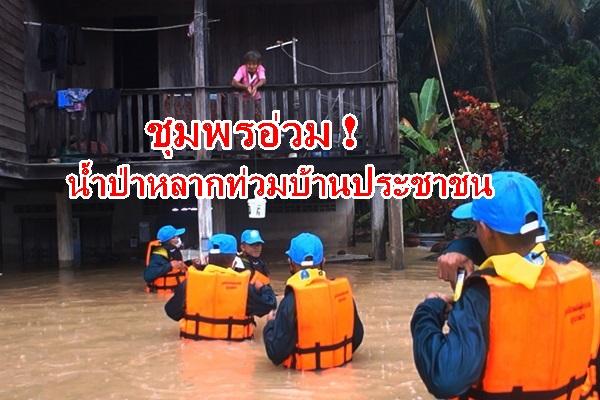 ชุมพรอ่วม! พายุหว่ามก๋อถล่มน้ำป่าหลากท่วมบ้านเรือนประชาชน